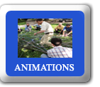 Animation Lyon Rhone Alpes